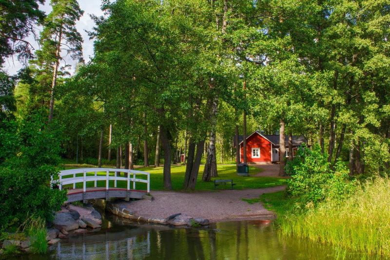 Eine Bank an einem Teich in ruhiger Atmosphäre