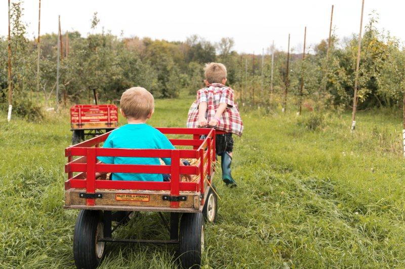 Kinder spielen mit Bollerwagen