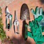 Ein Gartenschrank bietet Platz fuer Zubehoer