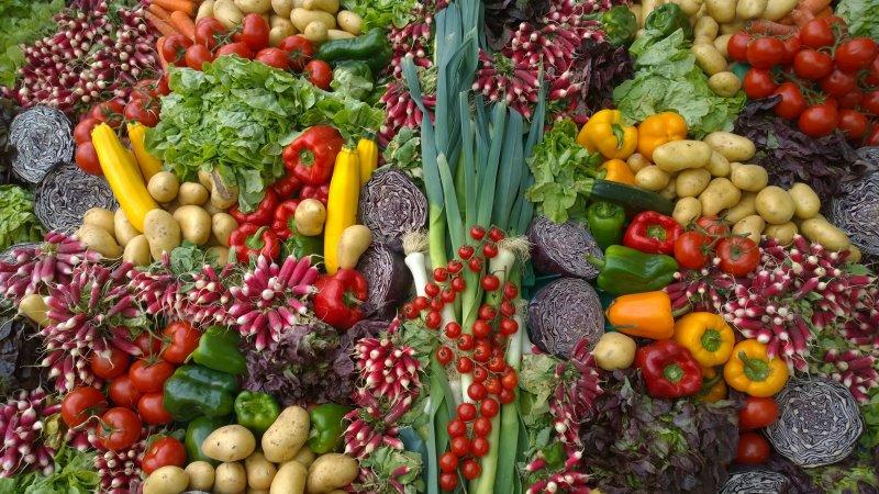 Sehr viel Gemüse