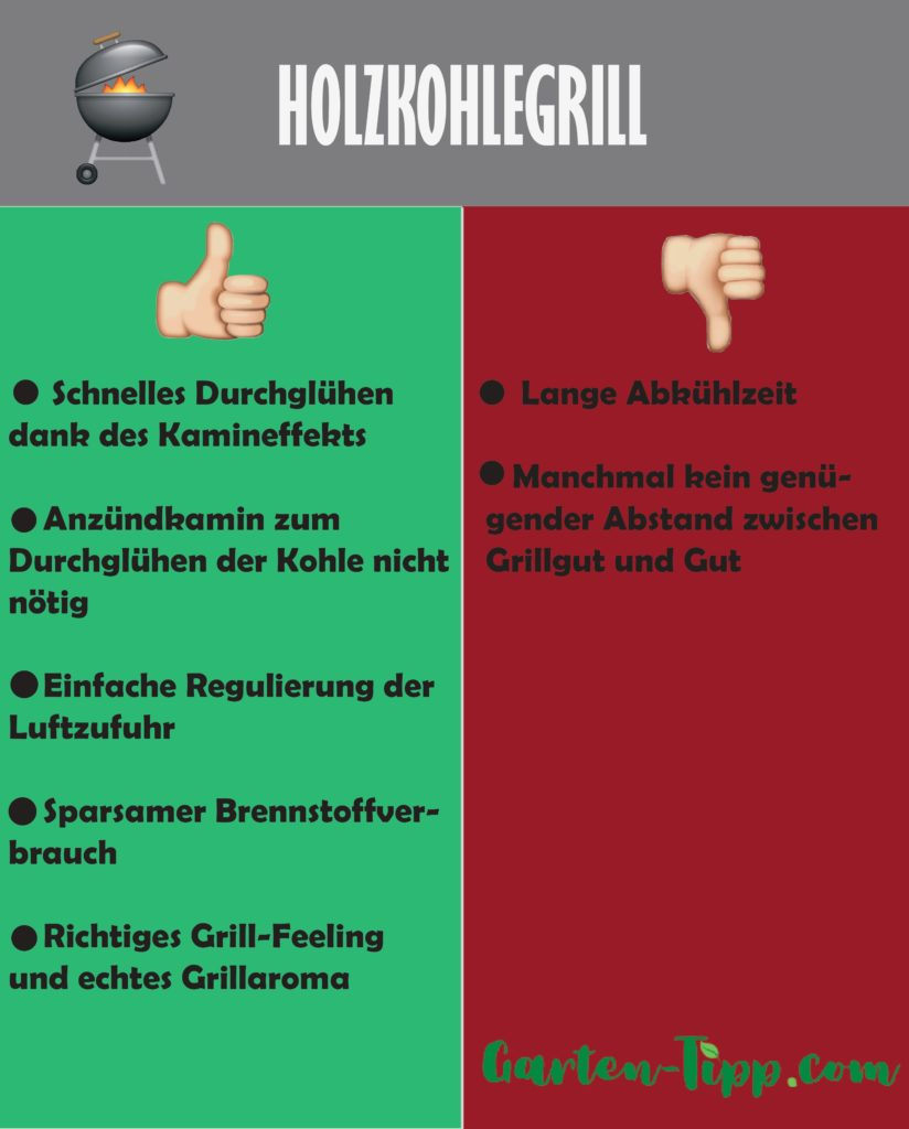 Infografik Holzkohlegrill