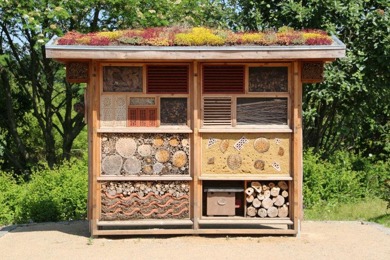 Ein Bienenhaus in der Natur