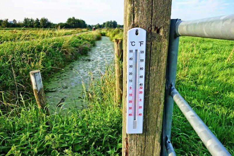 Ein Thermometer hängt im Freien an einem Zaun auf einer Wiese