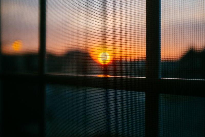 Abendsonne scheint durch ein Fenster mit Fliegengitter