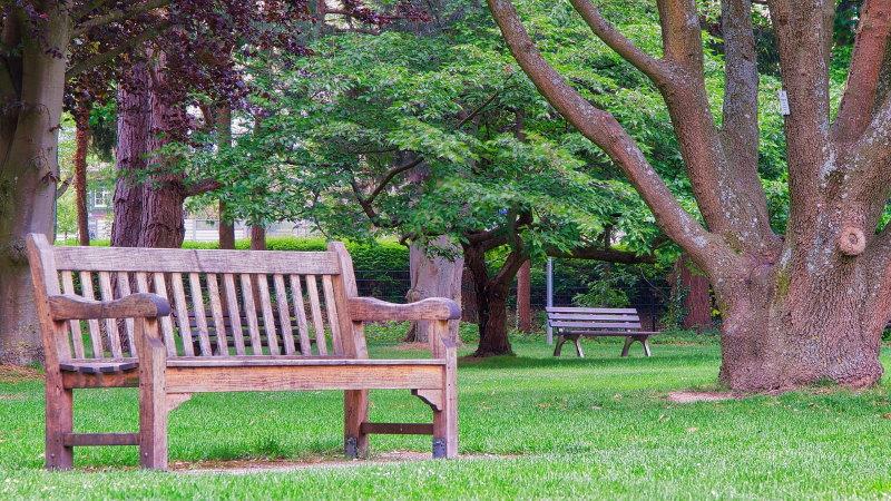 eine Bank in einem Park