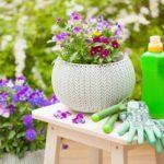Schöne Blumen, Blumendünger und Gartenhandschuhe