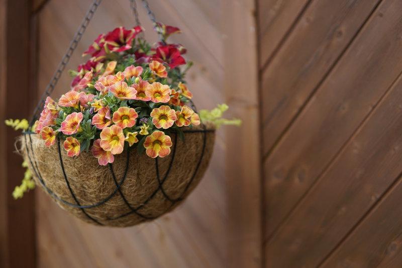 Mit Blumen bepflanzte Blumenampel aus Metall mit Kokosmatte.