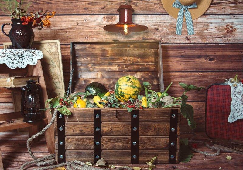 Gartenbox im Test