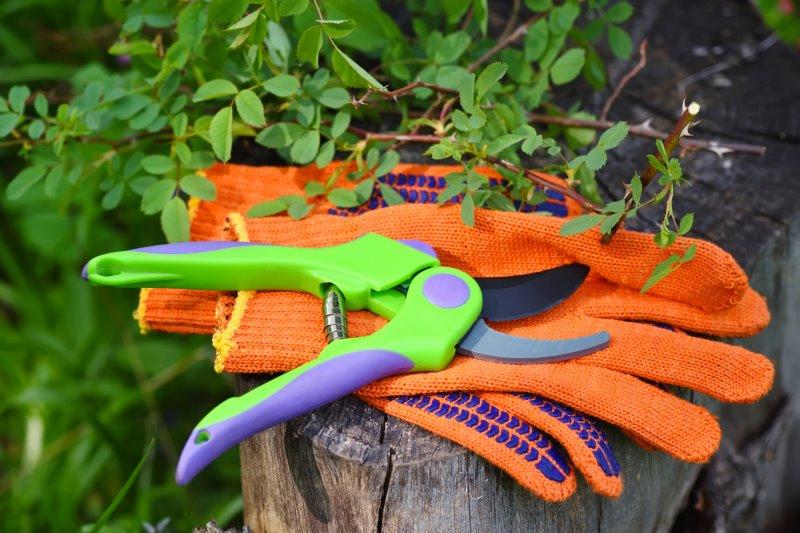 Grüne Gartenschere auf orangenen Handschuhen auf einem Zaunpfahl im Garten
