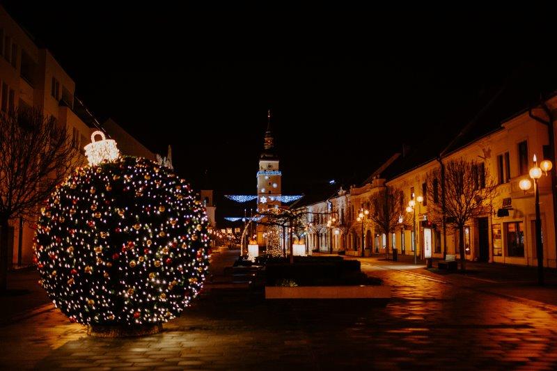 Ein Buchsbaum ist weihnachtlich beschmückt und mit einem schönen Lichternetz dekoriert.