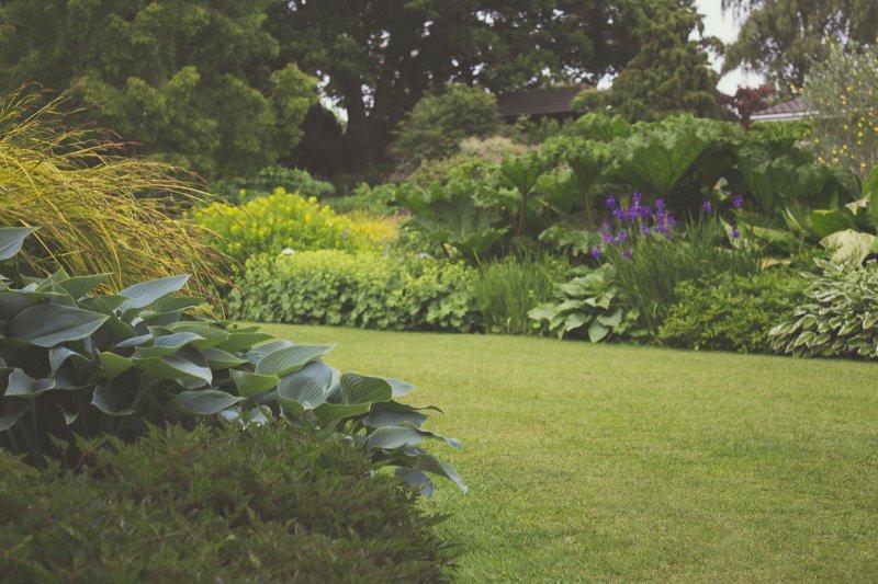 Große Rasenflächen brauchen motorisierte Geräte