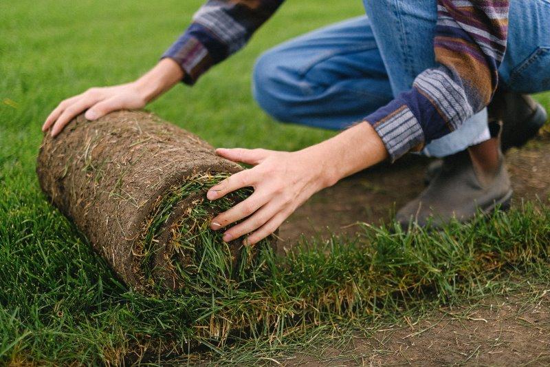 Eine Person rollt Rasen aus