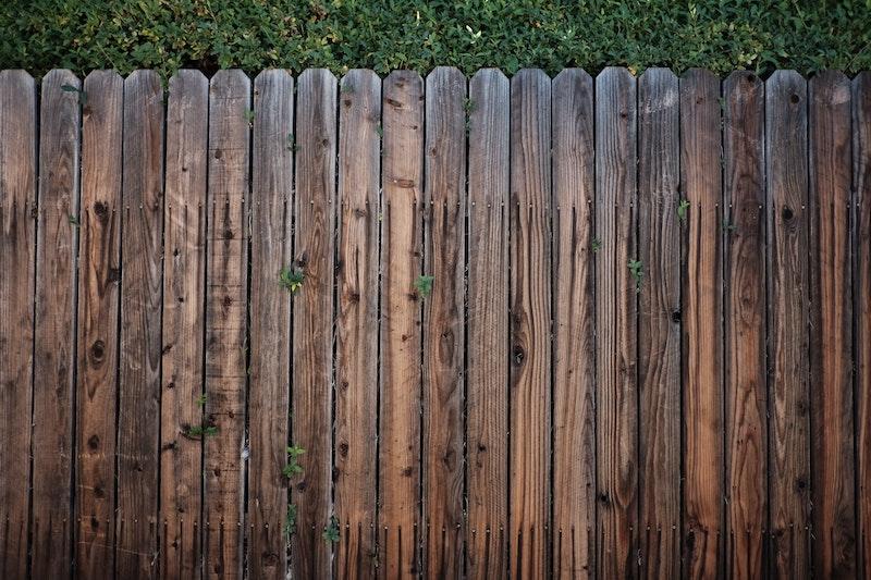 Holzzaun vor einer Hecke