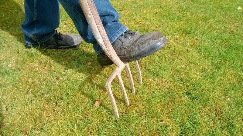 Moos auf dem Rasen wird entfernt