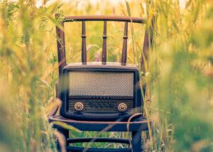 Vintage Gartenlautsprecher im Feld