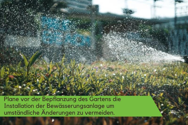 Ein Sprinkler bewässert die Gartenfläche