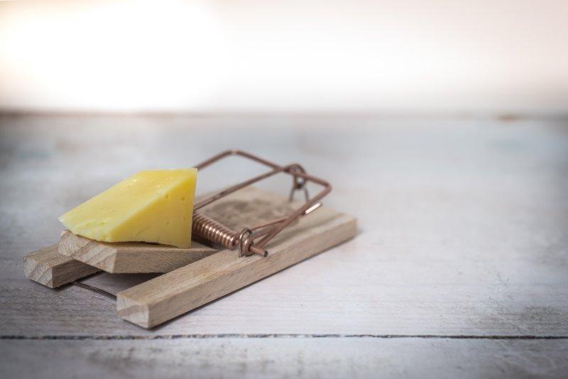 Ein Stück Käse auf einer Mausefalle