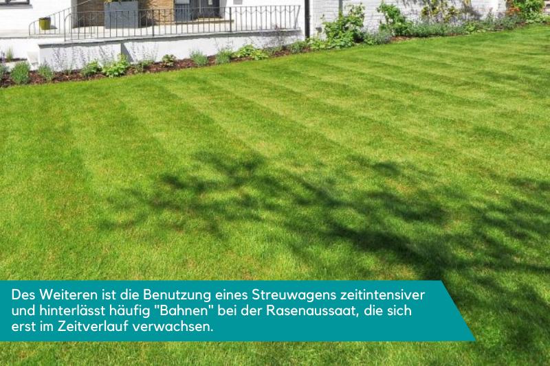 Ein Rasen der Streifen aufweist