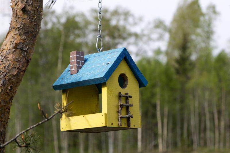Ein Vogelhaus in einem Waldstück.